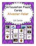 Apraxia & Articulation Cards Alveolar-Velar
