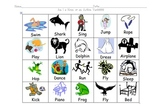 Am I a noun or an Action Verb, Kindergarten with pictures