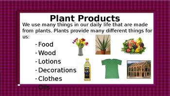Am I made from a plant? Uses of plants