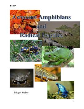 Amazing Amphibians and Radical Reptiles