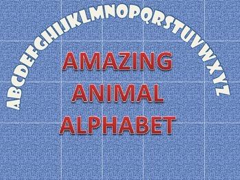 Amazing  Animal Alphabets