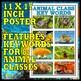 Amazing Animal Classes: FREE POSTER