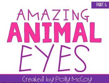 Amazing Animal Eyes