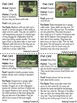 Amazing Animal Facts Complete Literacy Center - Informational Text