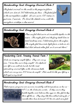 Amazing Animal Facts - Fun handwriting practice - D'Nealian Cursive