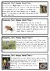 Amazing Animal Facts - Fun handwriting practice - Foundation Cursive