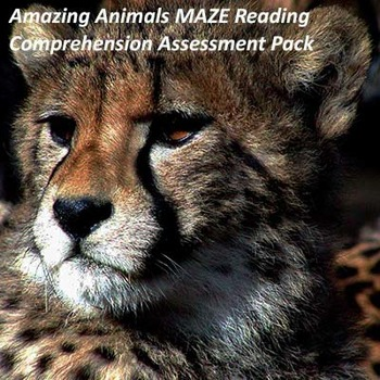 Amazing Animals Maze/Daze Reading Comprehension Assessment Pack Grades 3 and up