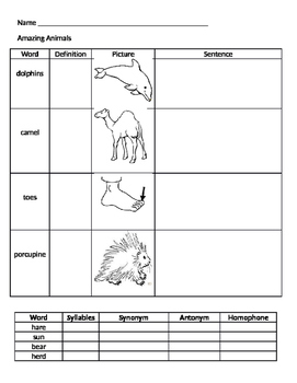 Amazing Animals Vocabulary Journey's Common Core