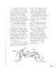 Amazing Ants! (Lexile 850)