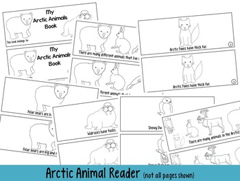Amazing Arctic Animals Unit