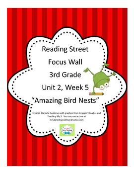 Amazing Bird Nests Focus Wall, Reading Street Grade 3, 2013 CC