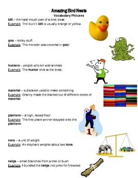 Amazing Bird Nests Reading Street Vocabulary