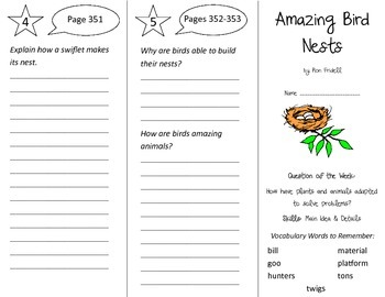 Amazing Bird Nests Trifold - Reading Street 3rd Grade Unit 2 Week 5