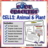 Amazing Cell Code Crackers - Breakout Sleuth Puzzlers