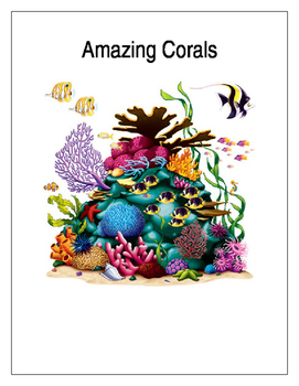 Amazing Coral (Coral Reef)