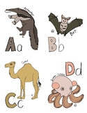 "Amazing Creature Hand-drawn Alphabet Cards // ""Anteater to Zebu"""