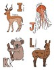 "Amazing Creature Hand-drawn Alphabet Cards // ""Anteater to Zebu"""