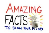 Amazing Facts to Blow your Mind
