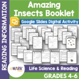 Amazing Insects Student Booklet Grades 4-6 - Google Slides
