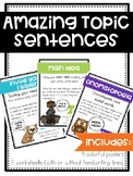 Amazing Topic Sentences Unit
