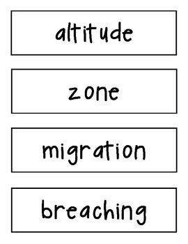 Amazing Words Cards Reading Street 4th Grade Unit 3