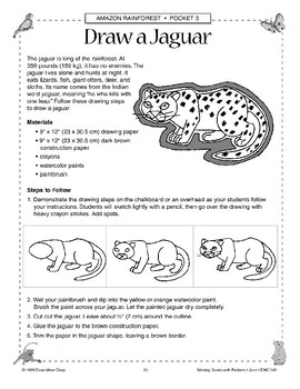 Amazon Animal Art Projects