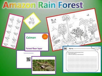 Amazon Rain Forest - Discover and build