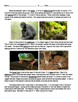 Amazon Rain Forest Informational Text