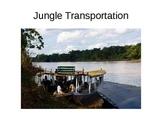 Amazon Rainforest Photo Tour