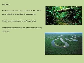 Amazon Rainforest - Power Point 17 slides all the facts history animals plants