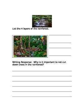 Amazon Rainforest Quiz