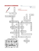 Amendments Crossword Puzzle Review - constitution united states america