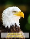 American Bald Eagle Unit Study