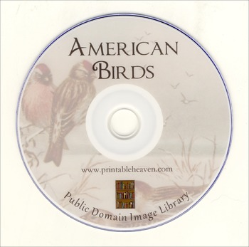 American Birds - more than 500 public domain bird images on DVD
