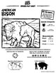 American Bison -- 10 Resources -- Coloring Pages, Reading
