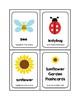 Sunflower Garden Picture Word Flash Cards