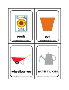 Sunflower Garden Picture Word Flash Cards