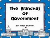 American Government: 3 Branches of Government
