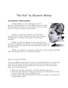 American Poetry Unit: Bishop, Cummings, and Plath