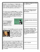 American Revolution - Annotated Reading