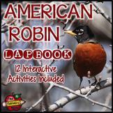 American Robins Lapbook