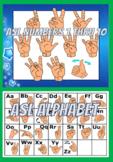 American Sign Language (ASL) Numbers & ABC's Bundle