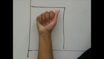 American Sign Language Alphabets