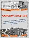 American Slave Life mini-unit, including text