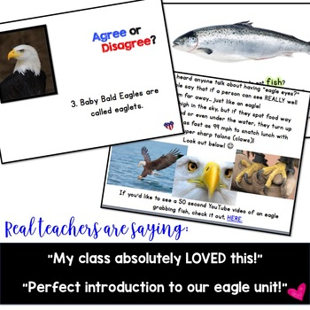 American Symbols! Bald Eagle Anticipation Guide & AWESOME Show!!