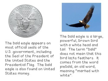 American Symbols-The Bald Eagle-Non-Fiction Reader and Craftivity