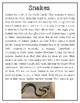 The Aminal / Read Aloud Book Companion