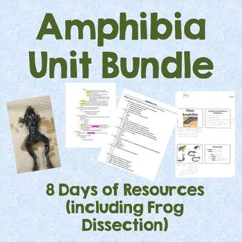 Amphibia Unit (+ Frog Dissection)