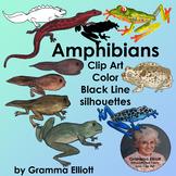 Amphibian Clip Art Semi Realistic Style Color Black Line and Silhouettes