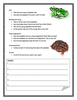 Amphibian Informational Report Writing Sheets, 12 Pages Total!!